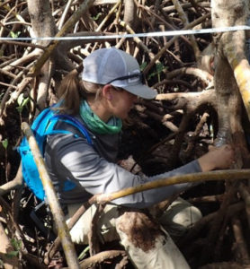 woman sitting in mangrove roots